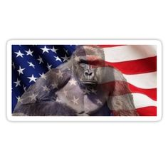 Harambe is America