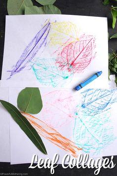 leaf collage fun for preschool