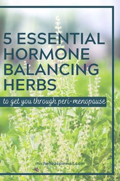 Hormone balance is crucial in making sure your body is functioning properly. There are many herbs to balance female hormones. Herbs are a great way to balance female hormones naturally. See now for 5 herbs to balance female hormones and learn how to relieve peri-menopause symptoms naturally. Foods To Balance Hormones, How To Regulate Hormones, Balance Hormones Naturally, Post Menopause, Menopause Symptoms, Hormone Diet, Natural Diuretic, Female Hormones, Life Is A Journey