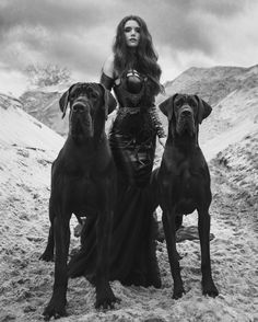 Forget The Stores, Try These Gothic Shopping Tips Gothic Fashion, Fetish Fashion, Dark Fashion, Dark Beauty, Gothic Beauty, Beauty Photography, Black Puppy, Girl And Dog, Dane Dog
