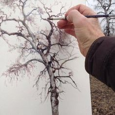 trees -Drawing trees - Luke Adam Hawker, who continues his pen art life in London, describes himself as a designer, an artist as well as an illusrator. Watercolor Trees, Watercolour Painting, Painting & Drawing, Drawing Trees, Watercolors, Painting Trees, Watercolor Techniques, Art Techniques, Drawn Art