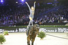 Master International de Voltige by CWD Trick Riding, Master, Vaulting, Cows, Leotards, Gymnastics, Equestrian, Training, Passion
