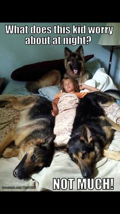 Taking about being safe...One of the times I feel PURE Safety: Sleeping Surrounded By DoGs