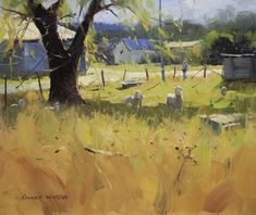 :: Colley Whisson :: Midday Shadows, Queensland