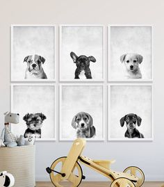 Six Puppy Dog Prints Animal Nursery Art French Bulldog Lab