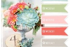 Lots of pretty colors with hex codes! Color Crush Palette » Photo Card Boutique