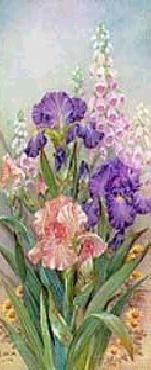 Lena Liu Purple Irises With Foxgloves