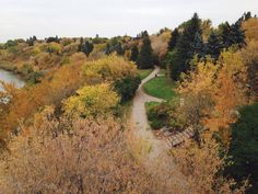 Every weeknight on News Hour Final and weekends on News Final, we feature a viewer submitted photo for Your Saskatchewan. September 2014, Fall Photos, News Hour, Country Roads, Pictures, Photography, Beautiful, Fotografie, Fotografia
