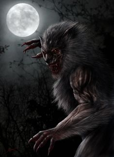My favorite Universal Monster, The Wolfman. The Wolfman Werewolf Vs Vampire, Werewolf Art, Vampire Art, Mythological Creatures, Mythical Creatures, Dark Fantasy Art, Dark Art, Wolf Spirit Animal, Images Gif
