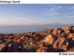 Antelope Island, Utah: Pretty always and usually not crowded. Something that can be enjoyed in peace.