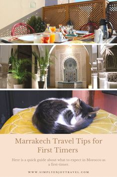 Be prepared for your first time in Marrakech to avoid surprises. Plan ahead of time and have some fun. Travel Guides, Travel Tips, Travel Destinations, Travel Advise, Marrakech Travel, Morocco Travel, Adventure Bucket List, Thing 1, Africa Travel