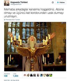 Ideas For Memes Hilarious Harry Potter Harry Potter Comics, Harry Potter Pin, Harry Potter Draco Malfoy, Harry Potter Actors, Harry Potter Anime, Harry Potter Memes, Hogwarts, Best Memes Ever, Funny Memes