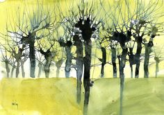 Paul Bailey - Contemporary Artist - Landscapes