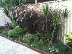 Zen, Landscape, Plants, Scenery, Landscape Paintings, Flora, Plant, Corner Landscaping, Planting