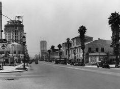 Yesterday's Print — Wilshire Boulevard, Los Angeles, 1930