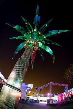 Tomorrowland Palm Trees