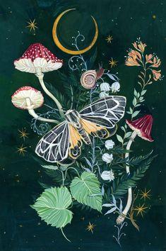 Mushroom Night Moth Art Print by Clara Mcallister - X-Small Framed Art Prints, Framed Artwork, Wall Art, Art Inspo, Moth, Stuffed Mushrooms, Illustration Art, Images, Photos