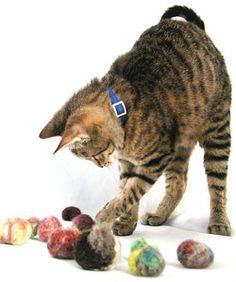 DIY cat toys using yarn bits and pantyhose.
