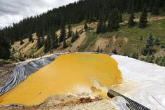 DENVER (AP) — A 3 million-gallon spill from a southwestern Colorado gold mine last year may have dumped more than 880,000 pounds of metals into the Animas River, the U.S. Environmental Protection Agency said Friday. Some of the metals reached...