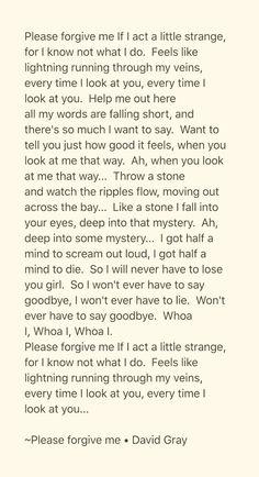 Songtext von David Gray - Please Forgive Me Lyrics