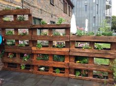 Pallet Planter- would love this for the bunnies in the backyard... Could put lettuce in them on the lower level!