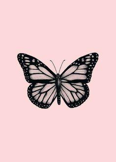 Butterfly Tattoos On Arm, Simple Butterfly Tattoo, Butterfly Drawing, Butterfly Tattoo Designs, Butterfly Outline, Butterfly Painting, Butterfly Wallpaper, Mini Tattoos, Black Tattoos
