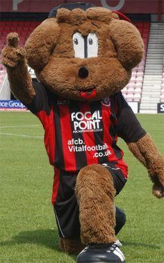 AFC Bournemouth - Cherry Bear.