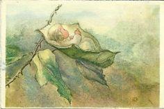 Polar Bear's Tale: Sweet Mili Weber (1891-1978) postcards