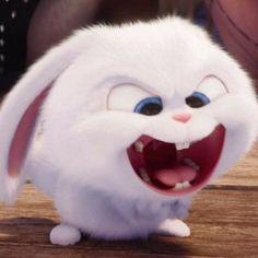 Be very affraid when I'm like this. Cute Bunny Cartoon, Cartoon Pics, Cartoon Wallpaper Iphone, Cute Disney Wallpaper, Snowball Rabbit, Hd Cute Wallpapers, Rabbit Wallpaper, Fluffy Bunny, Cute Memes