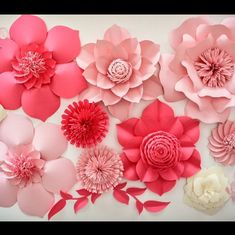 Gorgeous paper flower backdrop!