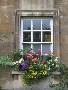Cambridge, England, Window box by whistlepunch, via Flickr