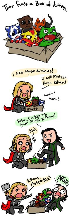 Thor and Loki...and Avenger-kittens. Cutest thing in the world.