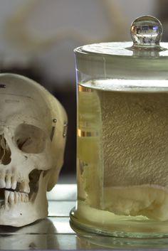 Human Flesh & Bones @ daseti