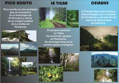 Triptico Interior Honduras