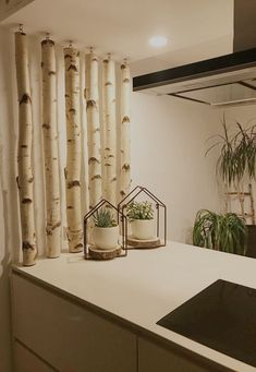 Beautiful white birch trunks as decoration in the kitchen. A fantastic eye-catcher. Birch trunks are available at Birkendoc: birkendoc. Deco Zen, Branch Decor, Cool Curtains, White Decor, Room Decor, Diy Home Decor, Home Bedroom, Room Divider Curtain, Home And Living