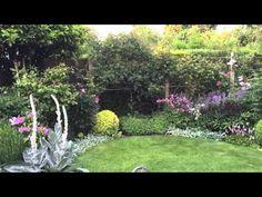 lovely new dawn rose caroline benedict smith garden design cheshire lovely gardens pinterest smith gardens gardens and plants