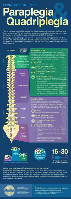 Infographic contains information regarding the difference between Quadriplegia and Paraplegia including vertebra and spinal functions.http://www.disabled-world.com/disability/para-quad.php