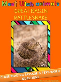 This is a close reading passage about Great Basin Rattlesnake followed by 8 text-dependent questions. Included is also an answer key.The passage is available in two versions: version A - grade level and above; version B - below grade level. $