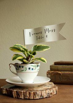 DIY Teacup Planter Favors