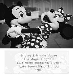 Send Micky & Minnie mouse a wedding invitation and receive a card back! Here is the Walt Disney World address instead of Walt Disney Land Mickey Mouse, Disney Mickey, Disney Parks, Walt Disney World, Disney Pixar, Disney Characters, Face Characters, Disney Cruise, Disney Princesses
