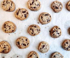 Alison Roman's Salted Butter and Chocolate Chunk Shortbread - Bake from Scratch