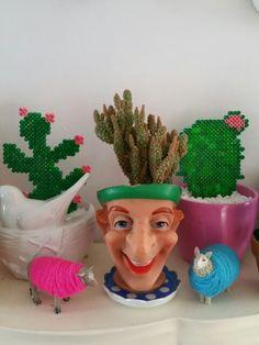 Poppenkast hoofd als cactus pot