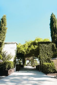 Sip wine and take in the lush landscape and gardens at Signor Vineyards. Fredericksburg Wineries, Texas Gardening, Here Comes The Bride, Wine Tasting, French Country, Lush, Vineyard, Things To Come, Gardens