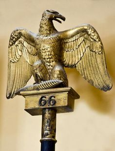 French first empire eagle of the regiment- presented by Napoleon and carried into battle by the troops. Napoleon French, French Empire, Napoleon Quotes, Napoleon Josephine, Battle Of Waterloo, British Soldier, French Army, French Revolution, Napoleonic Wars