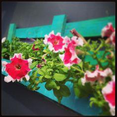 Primavera #paletmania