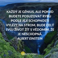 Každý je génius, ale pokud budete posuzovat rybu podle její schopnosti vylézt na strom, bude celý svůj život žít s vědomím, že je neschopná. Albert Einstein