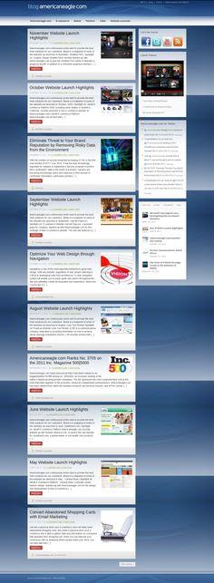 American Eagle Blog Design