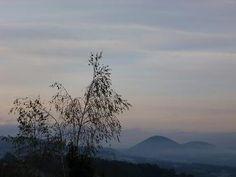 photos,art,nature,céline,couleurs,brume,brouillard,automne