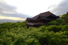 A rising temple above the trees in Kyoto.
