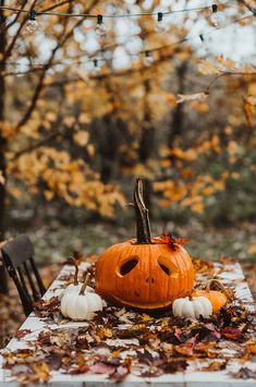 Fall pumpkins on an outdoor table during the fall season with leaves falling from trees. Halloween Season, Holidays Halloween, Halloween Fun, Halloween Decorations, Halloween Tricks, Vintage Halloween, Halloween Costumes, Herbst Bucket List, Fall Wallpaper
